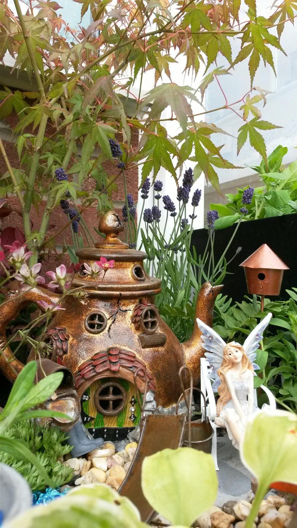 Gallery Fairy Gardens Uk