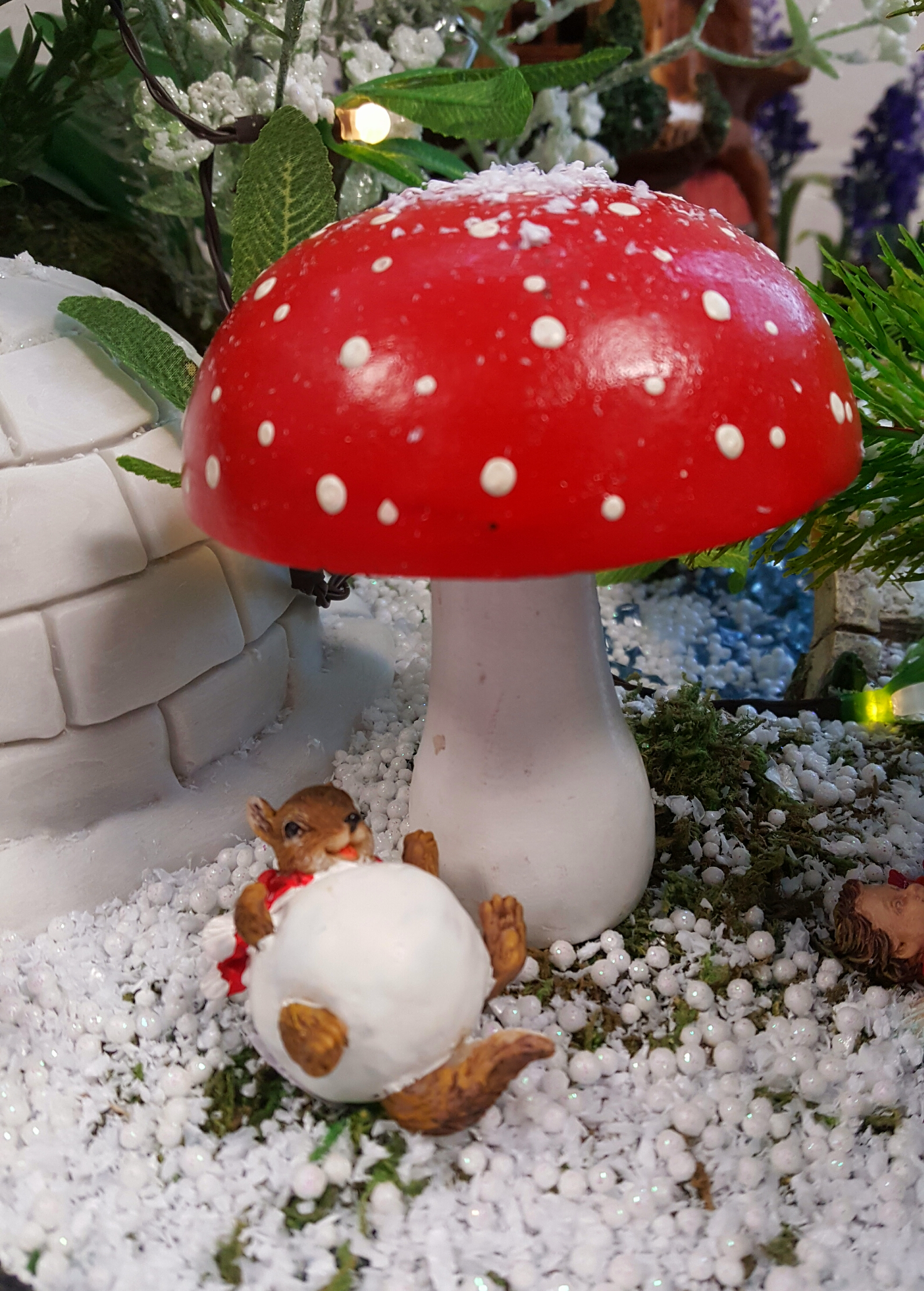 Red And White Toadstool Fairygardensuk Co Uk