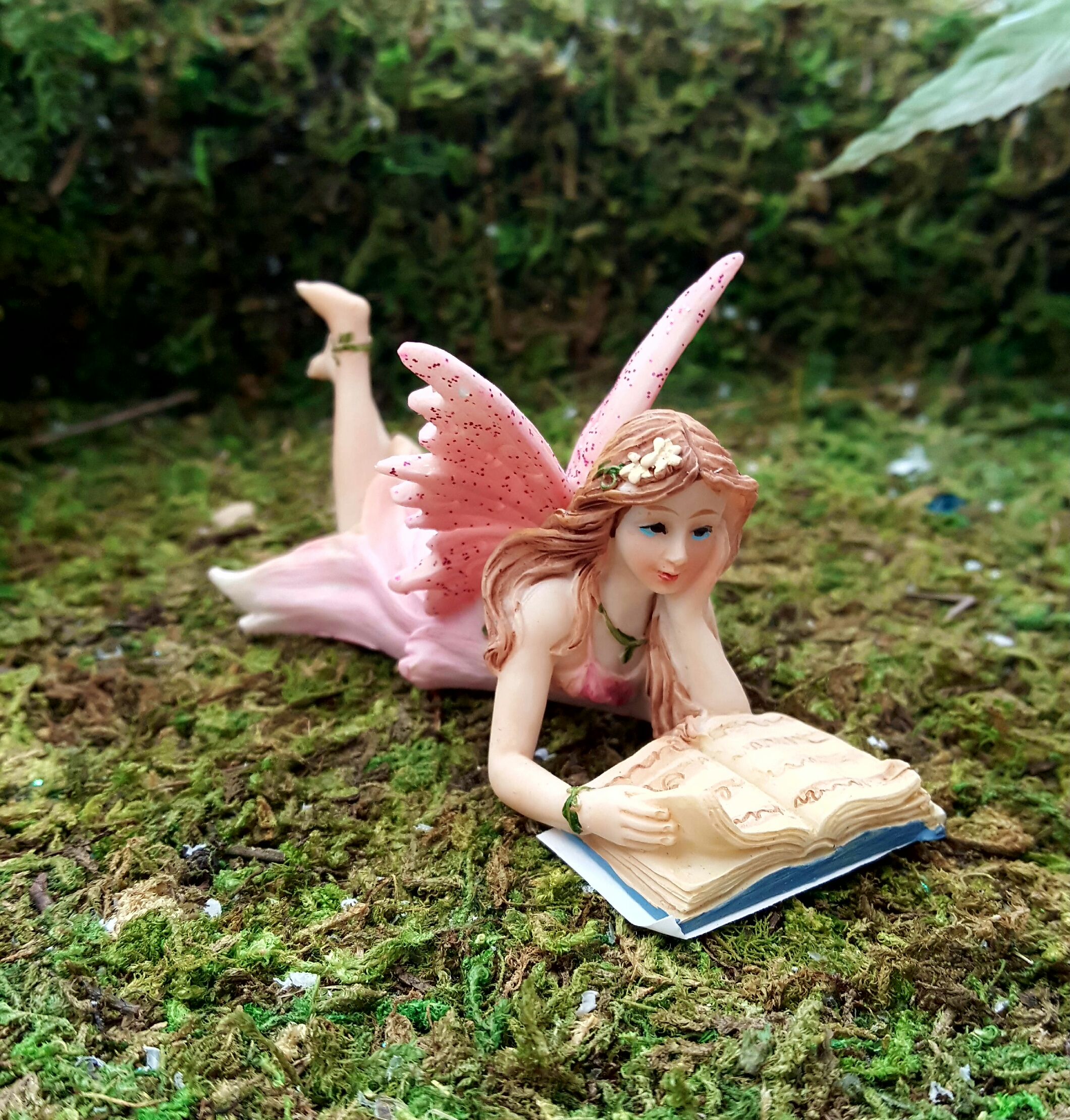 Book Reading Fairy Fairygardensuk Co Uk