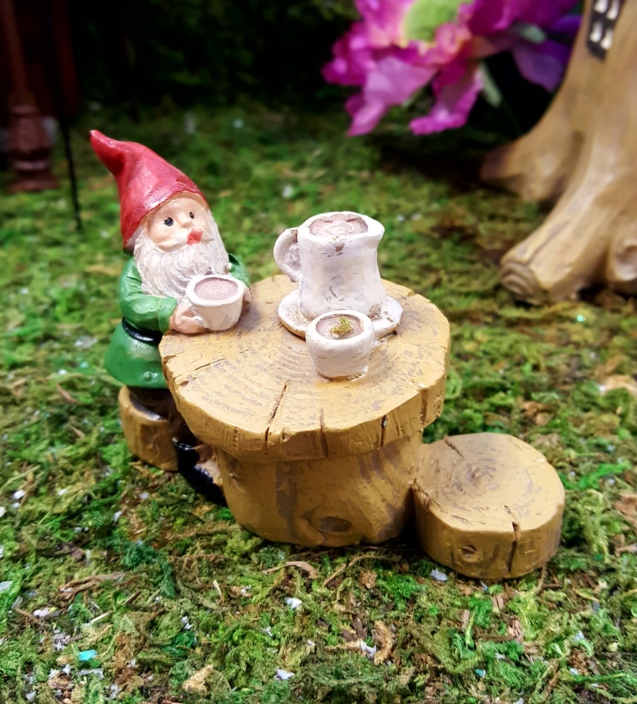 Gnome Garden: Garden Gnome Set-fairygardensuk.co.uk
