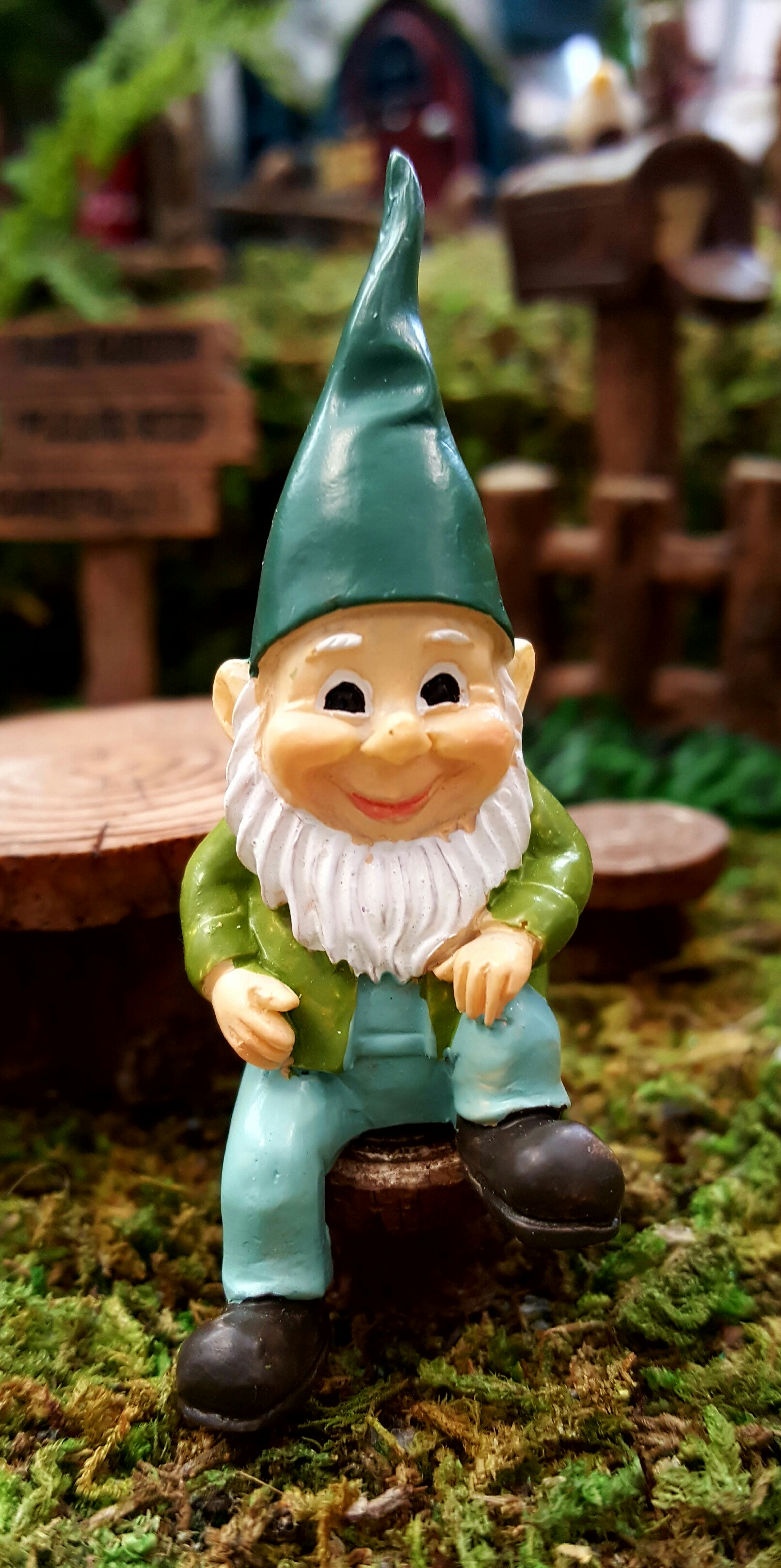 Happy Gnomes Fairygardensuk Co Uk