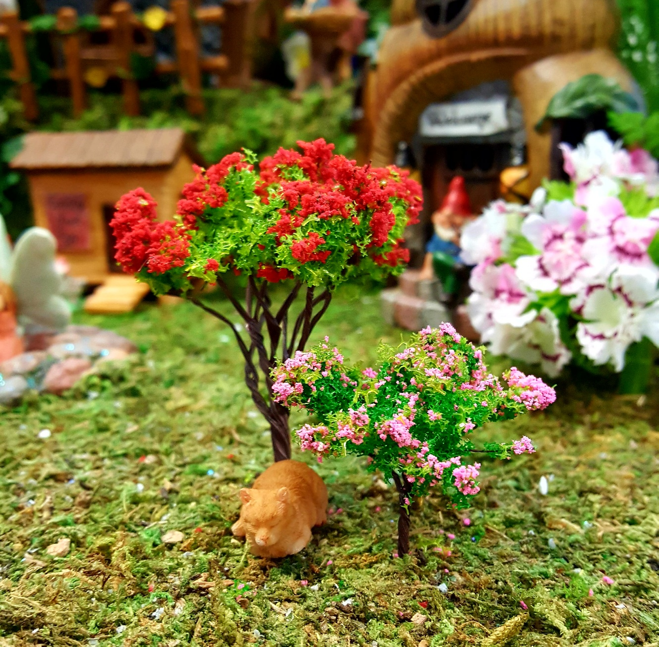 Small and medium flowering tree fairy gardens uk for Small to medium trees for garden