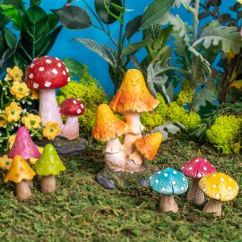 Toadstools and Mushrooms